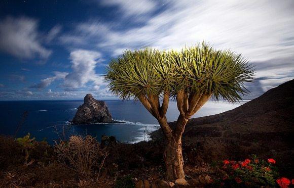 Drgao-Canarias